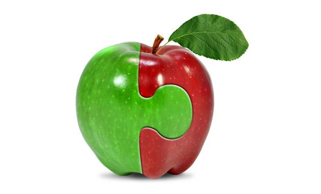 合体した2種類のりんご